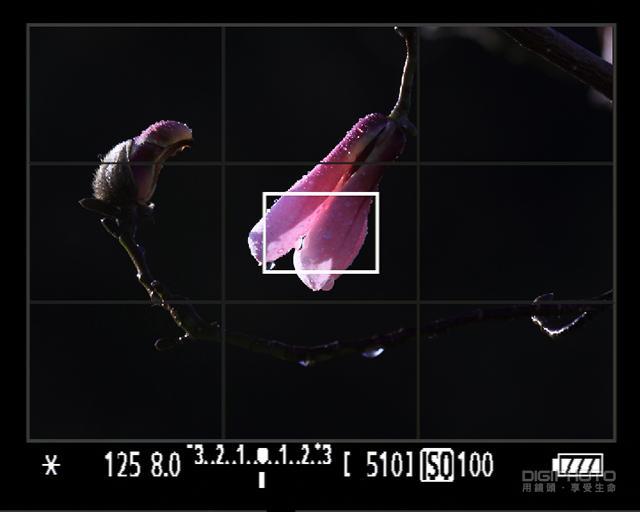 摄影常识基础:曝光锁定与曝光补偿入门