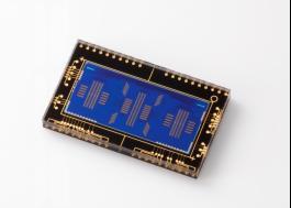 更加均衡 佳能发布EOS 5D Mark IV单反