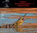 野兽机王―佳能EOS-1D X Mark II全面实战测评(一)