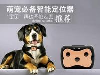 宠物不怕丢!买宠物定位器该注意点啥?