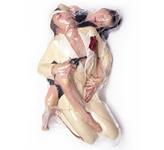 日本摄影师将情侣全裸放入塑料袋抽真空