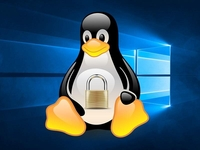 ����Windows Subsystem for Linux