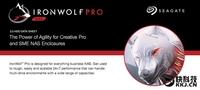 最强10TB!希捷发布IronWolf Pro NAS硬盘