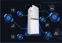海尔251L冰箱2299 家用双门大容量冰箱推荐