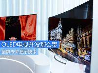 尝鲜未来显示技术 OLED电视并没那么贵