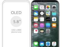iPhone8或将配OLED屏 各种屏幕到底有何不同?