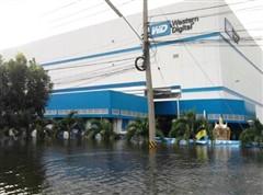 泰洪水促NB涨价!涨幅百元或至明年1月