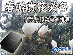 春游赏花必备 超高品质移动电源推荐