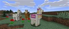 可以骑羊驼了:我的世界1.11版本终于上架