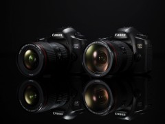 可靠的全能手 佳能EOS 5DS R商业与记录生活的AB面