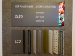 未来电视已来!LG Display OLED巅峰盛会举办