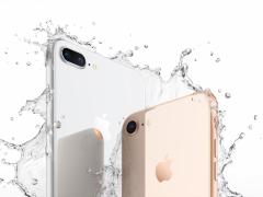 每日一答:iPhone 8和iPhone X要怎么抉择?