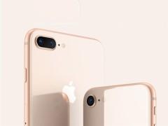iPhone 8今日首销 现场有多冷清? 店员都闲得玩起自拍
