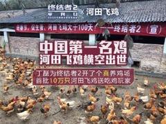 网易为自家手游开养鸡场:10万河田飞鸡免费送
