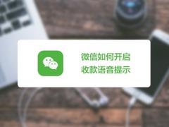 【视频】让支付更简单,微信如何开启收款语音提示?