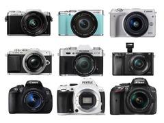 问答:要拍出好看的微距相片应该如何选择相机?
