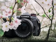 带着相机去旅行 与松下G9在武汉邂逅一次樱花之恋