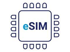 潜在发展热点? 浅析e-SIM及其优势