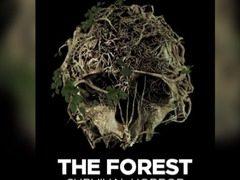 肝游戏:Steam游戏 森林(The Forest)上手体验