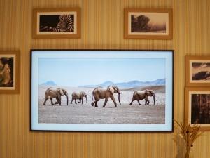 是电视更是艺术品 三星画·壁艺术电视图赏