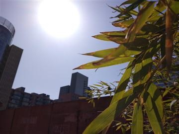 拍照也是它强项 vivo Xplay 5拍照体验