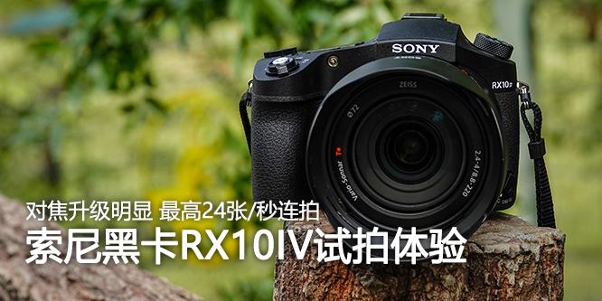 对焦与连拍比原来爽多了!索尼黑卡RX10 IV试拍体验