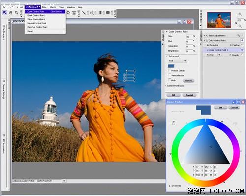 capture nx 也不只能支持尼康的专用nef格式文件,同样也能支持常用的图片