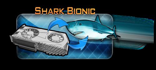 鲨鱼仿生学在今年得到一致的肯定
