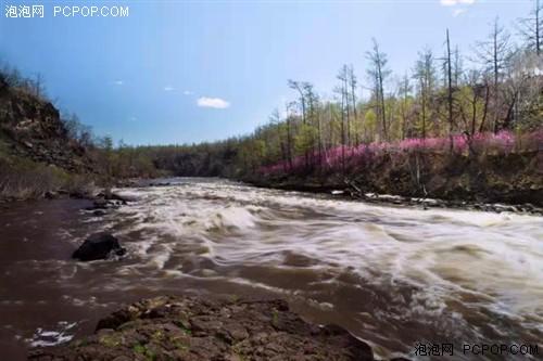 杜鹃花开红 航拍大兴安岭森林王国_-泡泡网图片
