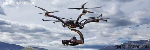10 壁纸 动物 飞机 鸟 鸟类 直升机 500_166