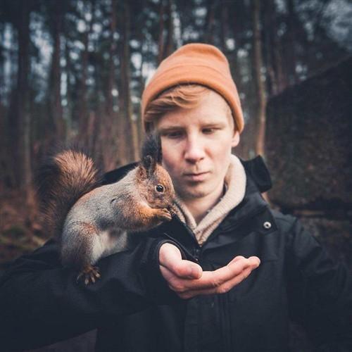 森林小动物的密友 摄