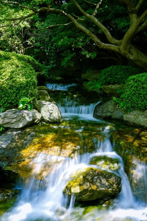 最新财生水流风景图片