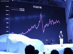 中国人的特斯拉 游侠纯电动汽车发布