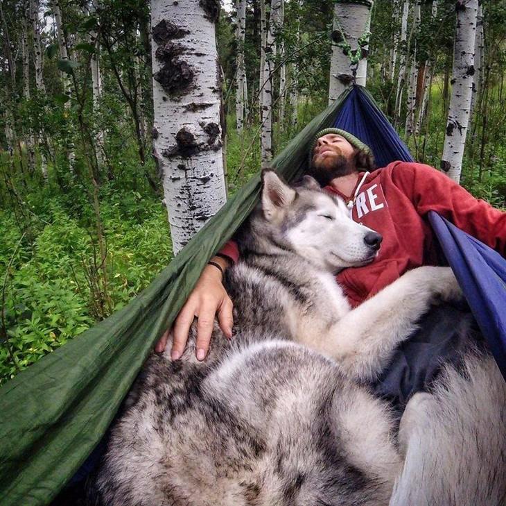 不愿狗狗被锁 于是他带着爱犬上路冒险