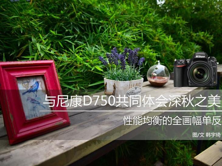 带上尼康D750 共同品味京城深秋之美