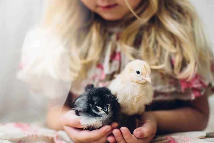 小孩与动物摄影比赛 得奖及入围作品