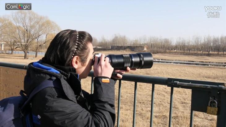 相机逻辑:奥巴300mm F4大黑炮打鸟记