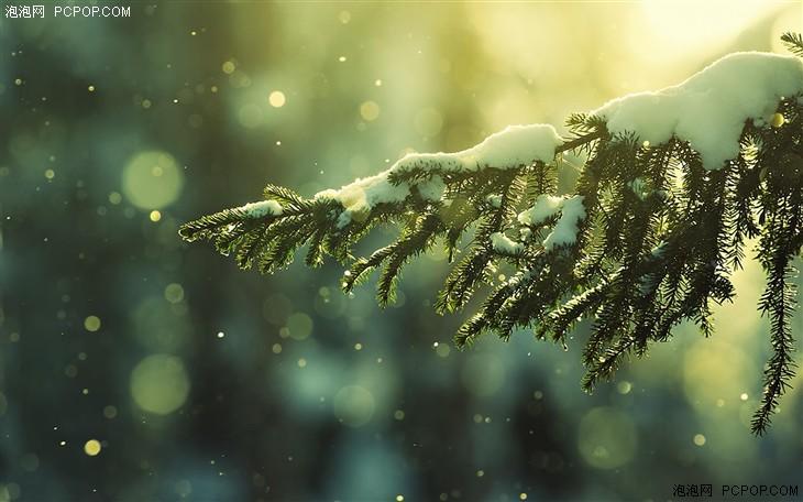 初雪就该这样拍