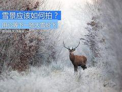 用心等下一场大雪纷飞 雪景就该这样拍