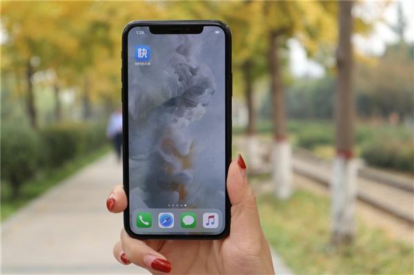 iPhone X人脸识别再翻车:母子二人均能解锁