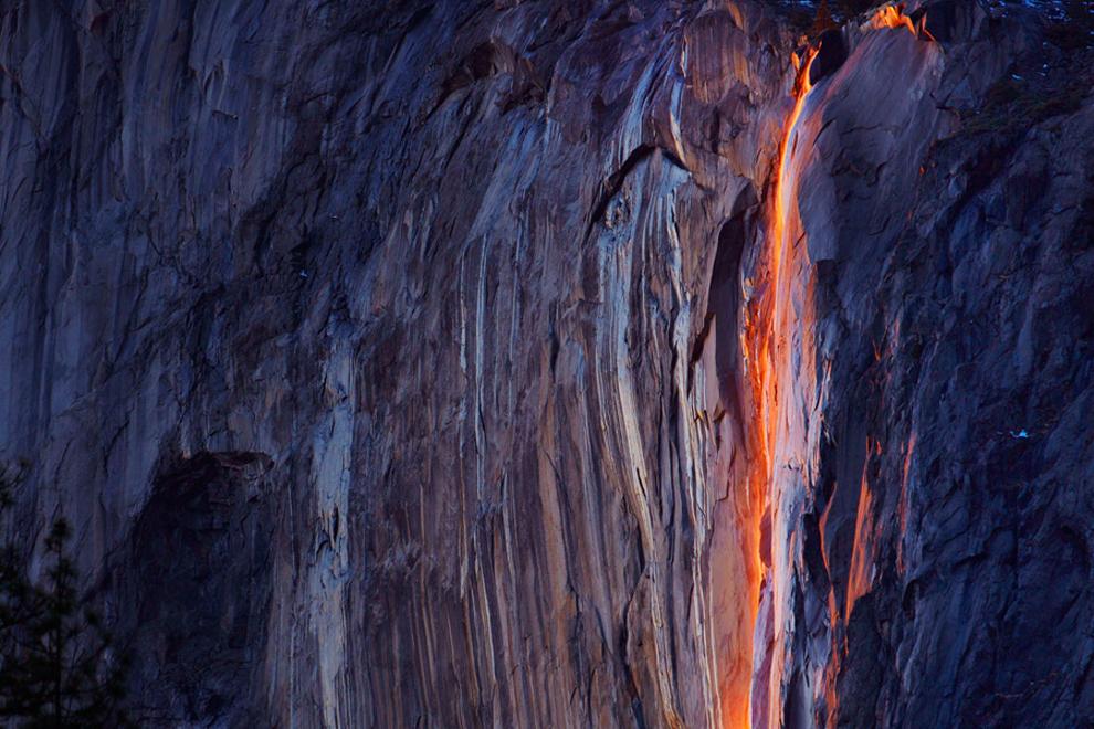 动物与自然 2012年精彩摄影作品赏析