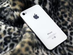 豹纹中的魅力 白色iPhone4静态美图赏