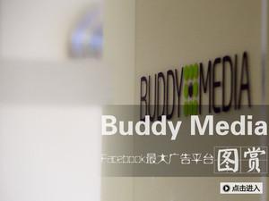 Facebook最大广告平台:Buddy Media