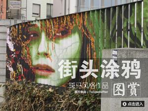 """街头艺术佳作:德国街头""""斑马式""""涂鸦"""