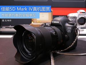 全幅单反新宠 佳能5D Mark IV上手图赏