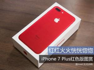 红红火火恍恍惚惚 iPhone 7 Plus红色版图赏
