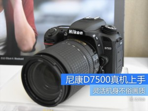 体型更轻巧可拍摄4K视频 尼康D7500真机上手