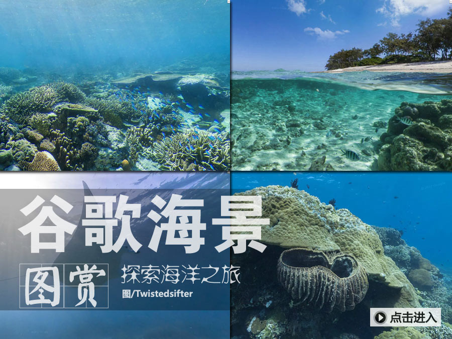 谷歌海景!满足你对海底世界的好奇心