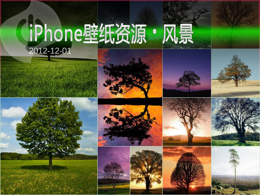 树的孤独意境 iPhone风景高清壁纸集