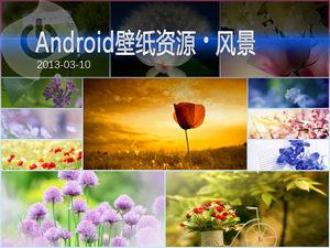 花海中的芬芳 Android风景高清壁纸集